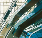 Escalators (Picture)